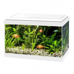 Aquarium Ciano 60 LED Blanc