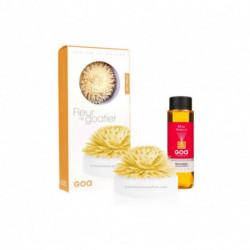 Coffret parfum d'ambiance Fleur de Goatier - Miel Vanille