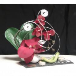 Orchidée rouge sur ardoise