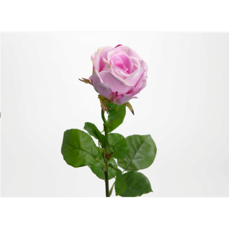 Rose fresh touch rose H 66 cm