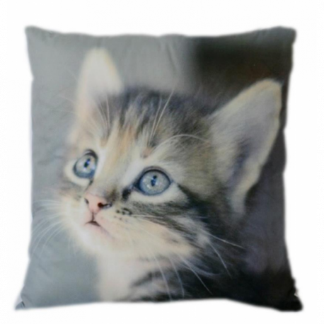 Coussin chaton