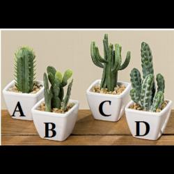 Cactus mini artificiel en pot hauteur 8 cm