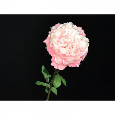 Pivoine rose 72 cm